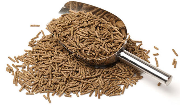 Feed_Pellets_by_Feed_Mill_Equipment